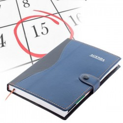 Discontinued Planner
