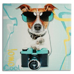 Photographer Dog Picture on Linen Canvas 40 x 40