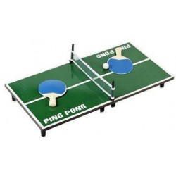 Mini Tabletop Ping Pong