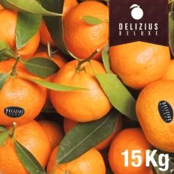 Deluxe Valencian Clemenules Mandarins 15 kg